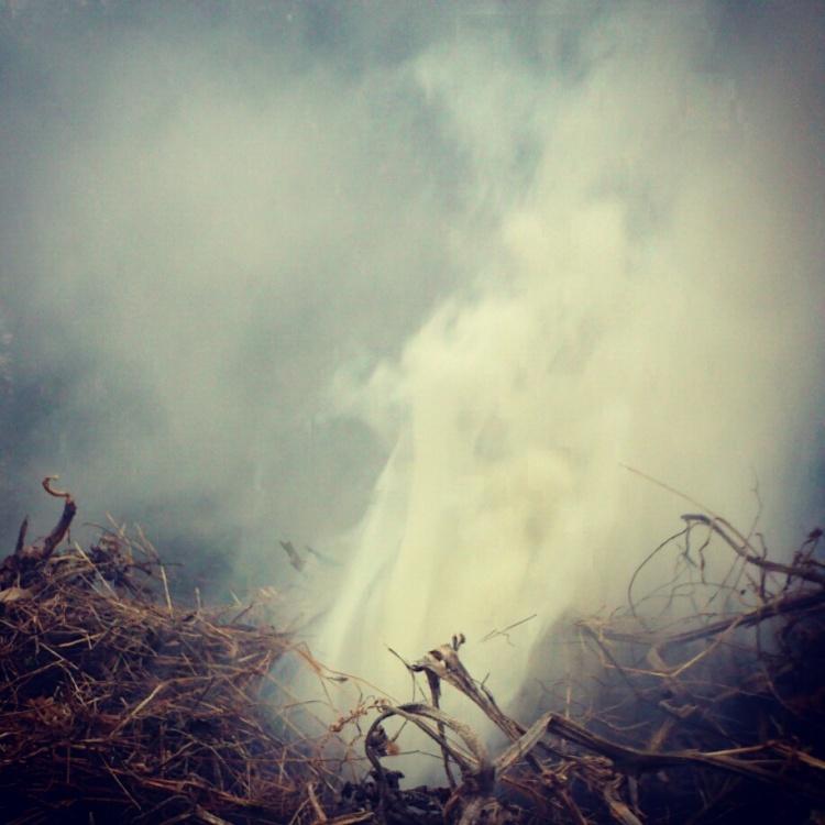 Fragmentaires-N--08-01